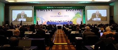 Designan a México sede de la COP13 en el 2016.