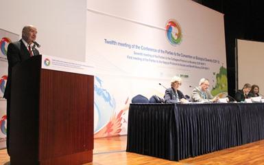 Promueve México en COP12 mejorar protección y conservación de biodiversidad.