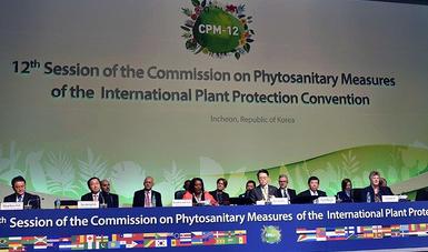 12ª Reunión de la Comisión de Medidas Fitosanitarias (CMF), de la Convención Internacional de Protección Fitosanitaria (CIPF)