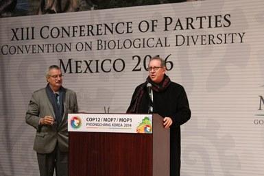 COP12 sobre diversidad biológica.