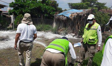 Las brigadas de la Comisión Federal para la Protección contra Riesgos Sanitarios (COFEPRIS) atendieron durante el fin de semana 15 comunidades afectadas por el sismo en los estados de Chiapas y Oaxaca, para reforzar las acciones y proteger la salud de la