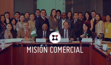 Este tipo de actividades son un ejemplo de estrategia de diversificación de relaciones económicas de México con Nigeria.