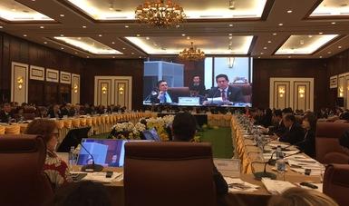 México participó en el primer día de trabajo de la 29ª Reunión Conjunta de Ministros de APEC