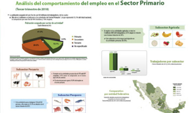 Análisis del comportamiento del empleo en el sector primario.