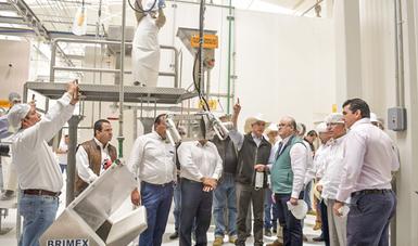 México exporta al año 220 mil toneladas de carne, así como 1.2 millones de becerros en pie.