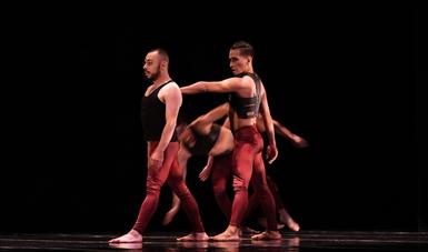 Para conocer más de Nisi Dominus y Aksenti Danza Contemporánea, visita: www.aksentidanza.com
