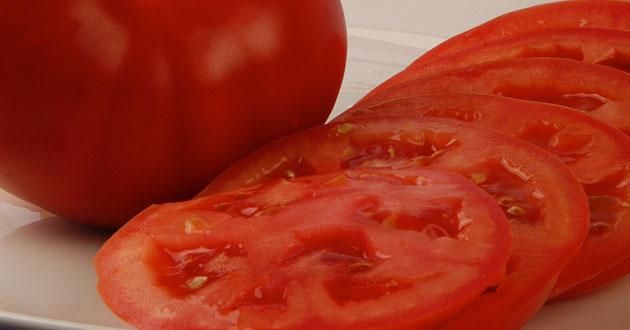 Resultado favorable para las exportaciones Mexicanas de tomate a los Estados Unidos