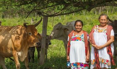 Las mujeres indígenas acordarán una agenda de políticas públicas que fortalezca su empoderamiento.