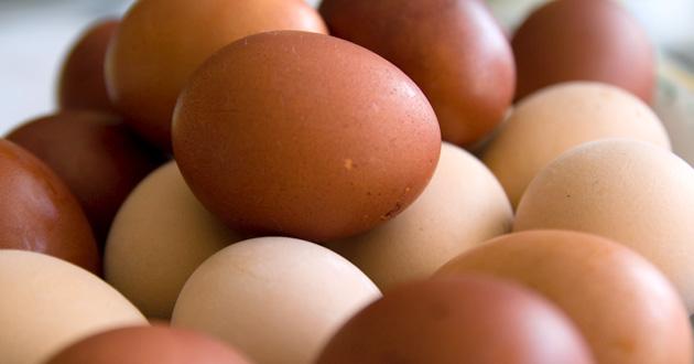 La Secretaría de Economía no justifica desabasto de carne de pollo y huevo, ni aumento en los precios derivados del brote de influenza aviar en Guanajuato