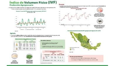 Índice de Volumen Físico (IVF)