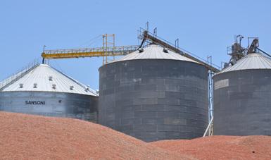 La SAGARPA pondrá en funcionamiento el subcomponente de Infraestructura de Almacenamiento de Granos y Servicios de Información para la Competitividad Agrícola. Se invertirán 120 millones de dólares a cinco años en beneficio de los pequeños productores.