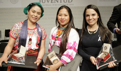 El máximo reconocimiento que otorga el Gobierno a jóvenes mexicanos cuya conducta o dedicación al trabajo o al estudio cause entusiasmo y admiración entre sus contemporáneos y pueda considerarse ejemplo estimulante para continuar creando.