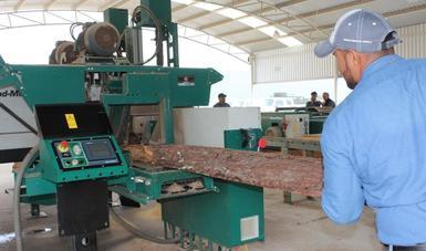 Apoya CONAFOR instalación del aserradero con mayor capacidad productiva en Jalisco