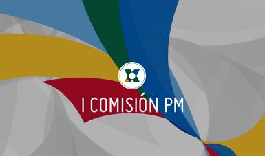 Costa Rica continuará las acciones de su Plan de Trabajo durante este primer semestre de 2018