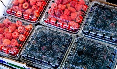 La SAGARPA promueve activamente los productos orgánicos mexicanos en los mercados internacionales.