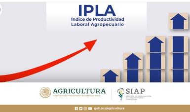 Índice de Productividad Laboral Agropecuario (IPLA)