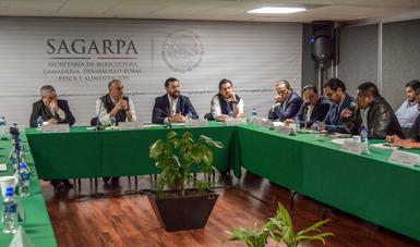 Foto logo Sagarpa , Calzada Rovirosa, Jorge Narváez Narváez, Alejandro Vásquez Salido