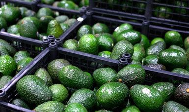 Las declaratorias impactan de manera positiva a mil 317 productores de ambas entidades