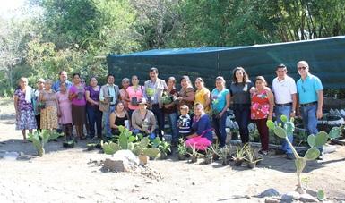 Apoya CONAFOR a mujeres de Suchitlán con ecotecnias forestales