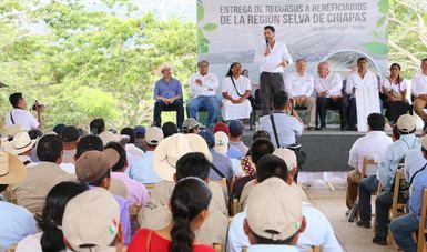 Durante esta administración se ha invertido más de 600 millones de pesos para la conservación de la Selva Lacandona