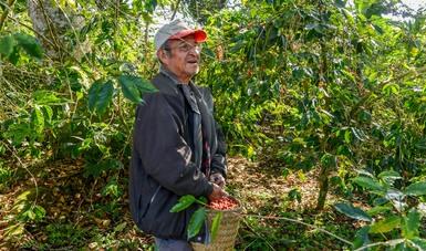 El evento representa para México una ventana de oportunidad para el fortalecimiento del sector cafetalero.