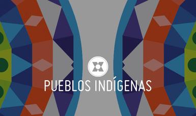 Los dos días de debate tienen como objetivo ser un espacio de diálogo y concertación entre gobiernos y representantes de los pueblos indígenas que contribuya a formular un posicionamiento iberoamericano.