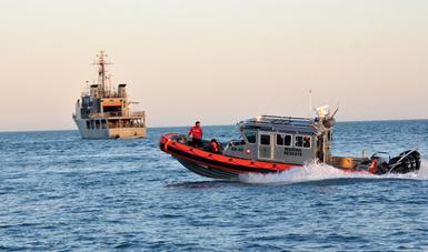 En el primer trimestre del año se aseguraron 35 totoabas, cuatro buches de esta especie endémica y ocho embarcaciones; asimismo, 15 personas fueron detenidas.