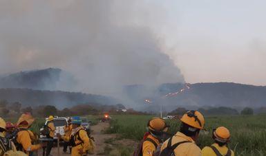 Controlan al 100% incendio forestal en Bosque La Primavera
