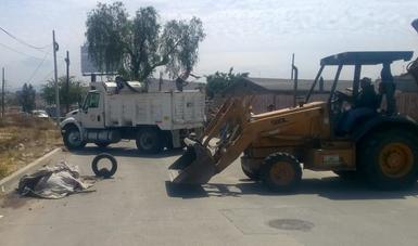 PROFEPAen coordinación con Policía y personal de Obras Públicas de Tijuana, Baja California, atendió el reporte sobre un lobo marino (Zalophus californianus) que se encontraba sin vida en la vía pública, cubierto con una cobija y atado con una soga.
