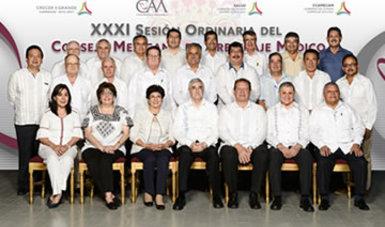 XXXI Sesión Ordinaria del CMAM