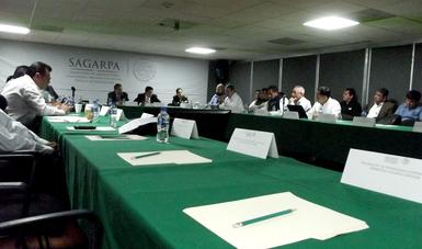 Reunión del Comité Nacional de Pesca y Acuacultura