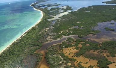 La SEMARNAT y CONANP inician Controversia Constitucional contra el Programa de Desarrollo Urbano publicado por el Municipio de Lázaro Cárdenas, en el Estado de Quintana Roo
