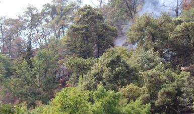 Controlado incendio forestal en Valle de Bravo