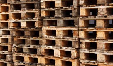 El embalaje como tarimas, cajas, cajones, jaulas, carretes, estiba y calzas, generalmente es fabricado con madera no manufacturada, que carece de un procesamiento o tratamiento suficiente para eliminar las plagas.
