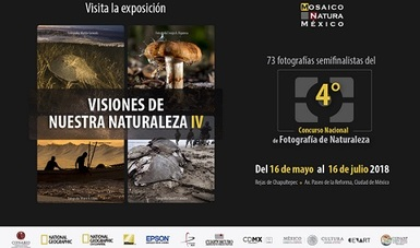 bp257_expo_visiones_16may18