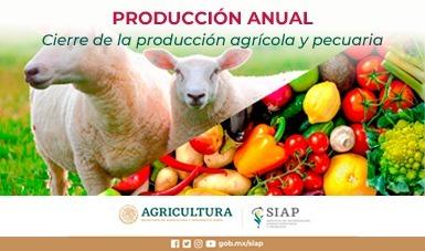 Cierre de la producción Agropecuaria