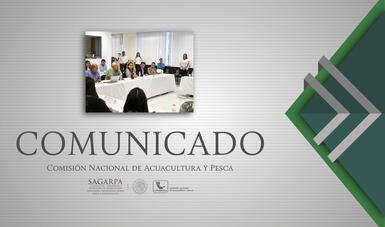 Con el curso de Actualización en Gestión y Política Pesquera Internacional, los servidores públicos de CONAPESCA adoptarán conocimiento, aptitud, capacidad de integración, disciplina y entendimiento de la autoridad.