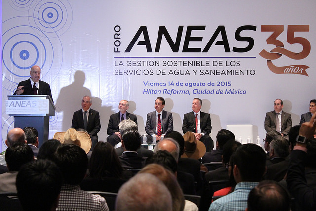 Foro ANEAS, 35 años.