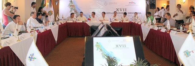 Reunión Ordinaria de la ANAAE.
