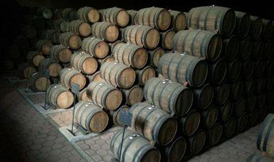Barricas de tequila apiladas.