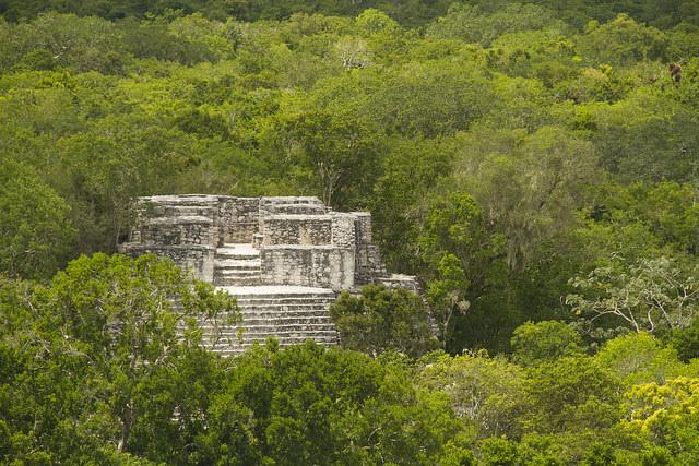 Calakmul designado por UNESCO como Bien Mixto.