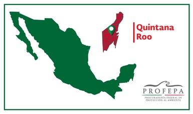 La PROFEPA sancionó a representantes de la comunidad menonita y de los ejidos El Paraíso y El Bajío,Municipio de Bacalar, Quintana Roo, por $10,266,640.00 pesos.