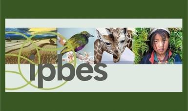 bp266_valores_biodiversidad_020818