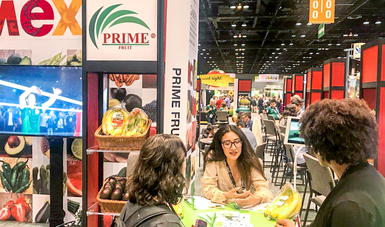 """La Secretaria de Agricultura, Ganadería, Desarrollo Rural, Pesca y Alimentación (SAGARPA), apoyó a 17 agroempresas nacionales que conformaron el Pabellón mexicano en la expo """"United Fresh Show"""" que se llevó a cabo en la ciudad de Chicago, Illinois, EEUU."""