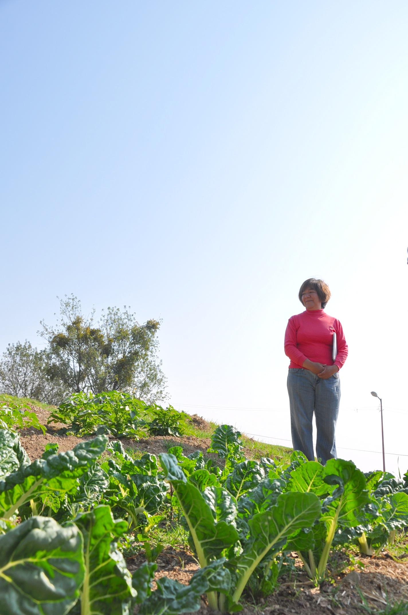 Mujeres en el Sector Rural