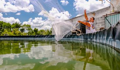 Por su impacto en muchas comunidades rurales de nuestro país,  la acuacultura ha sido un factor determinante para la superación de la pobreza: CONAPESCA