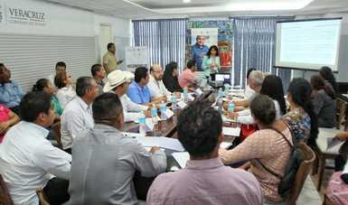 Mecanismo de Participación Ciudadana 2018