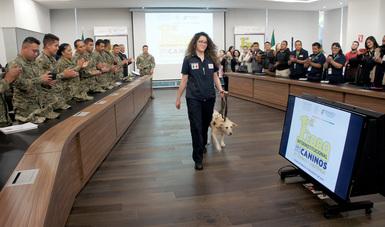 Con honores despide el Servicio Nacional de Sanidad, Inocuidad y Calidad Agroalimentaria (SENASICA) a seis perros de la Escuela Canina que concluyeron su ciclo de trabajo de inspección sanitaria en carreteras y puntos de ingreso del país.