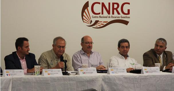 Se integraron grupos de trabajo por países, o bloques, para la atención especializada de temas.