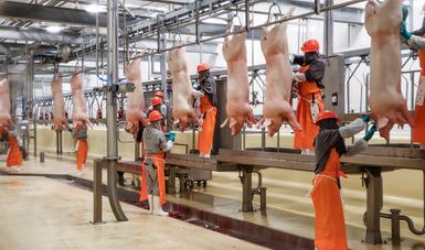 Japón es el tercer país en importancia como destino de las exportaciones agroalimentarias mexicanas.